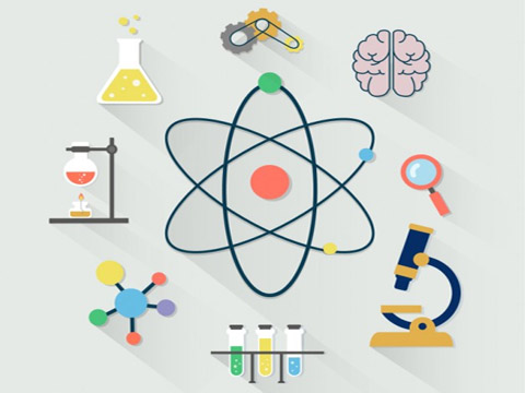 Sciences (Life, Physical, Social Science)